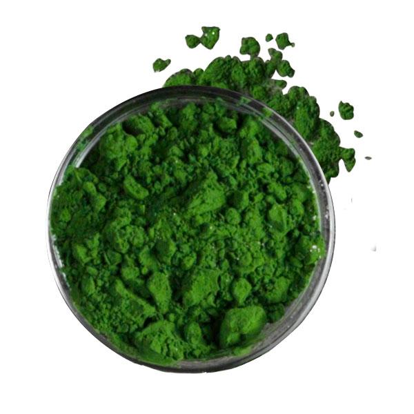 Chlorella-Algen